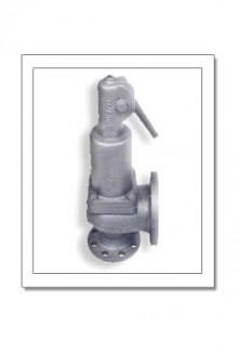 valvulas-de-seguridad-de-acero-1589132971.jpg